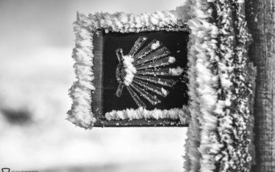 5 razones que te animarán a hacer el Camino de Santiago durante los meses de invierno