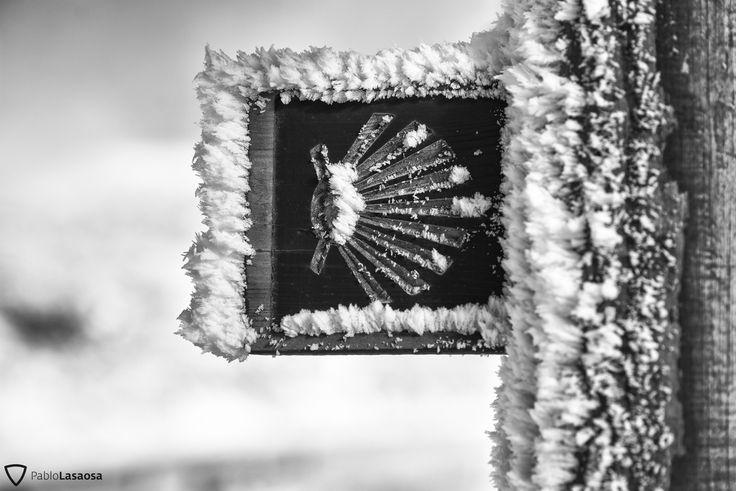 camino-invierno