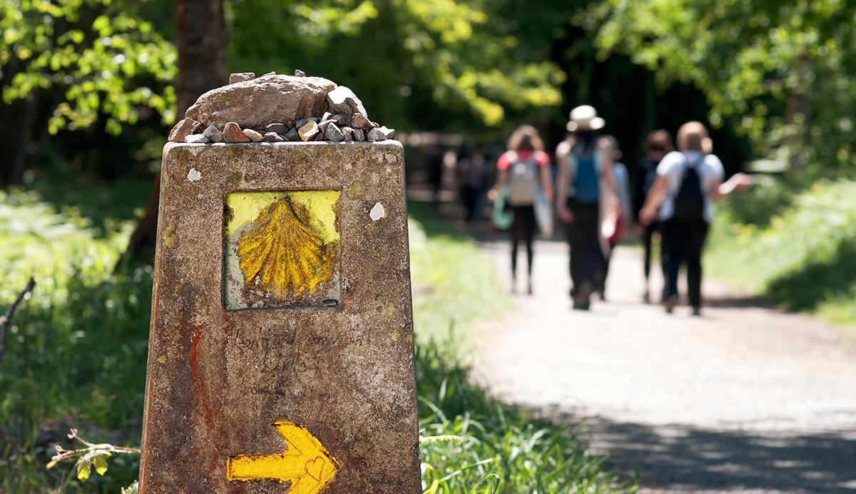 Camino Consejos_Camino_de_Santiago