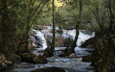 ¿Conoces las Fervenzas del Río Ulla en Palas de Rei?