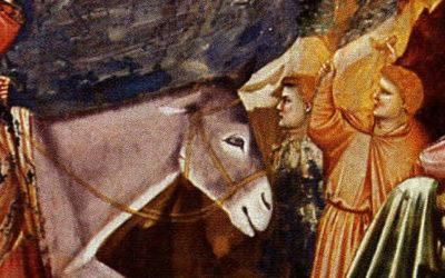 Leyendas del Camino: El Asno del Apóstol